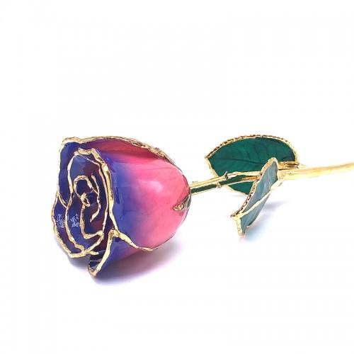 24K Gold Dipped Purple & Pink Rose