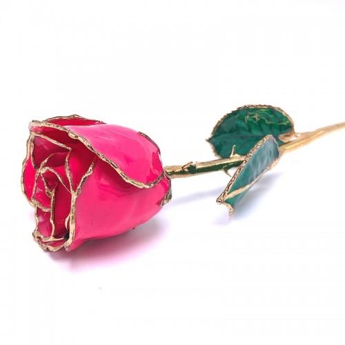 24K Gold Dipped Magenta Rose