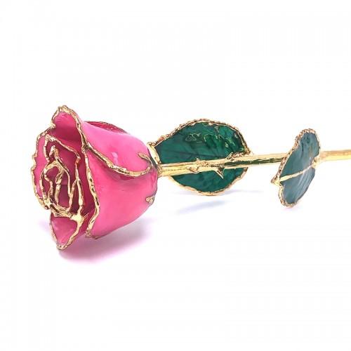 24K Gold Dipped Pink Rose