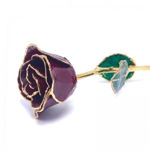24K Gold Dipped Burgandy Rose